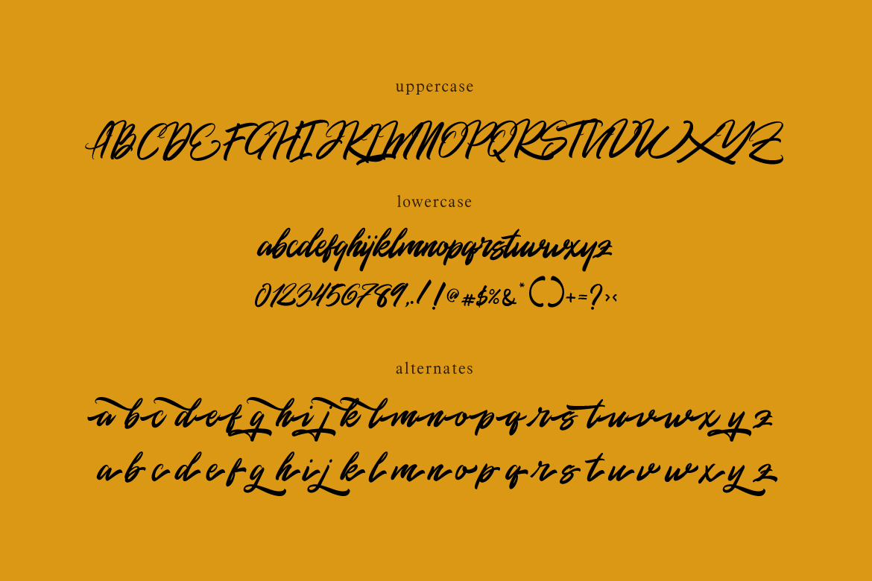 Rommantis Script example image 8