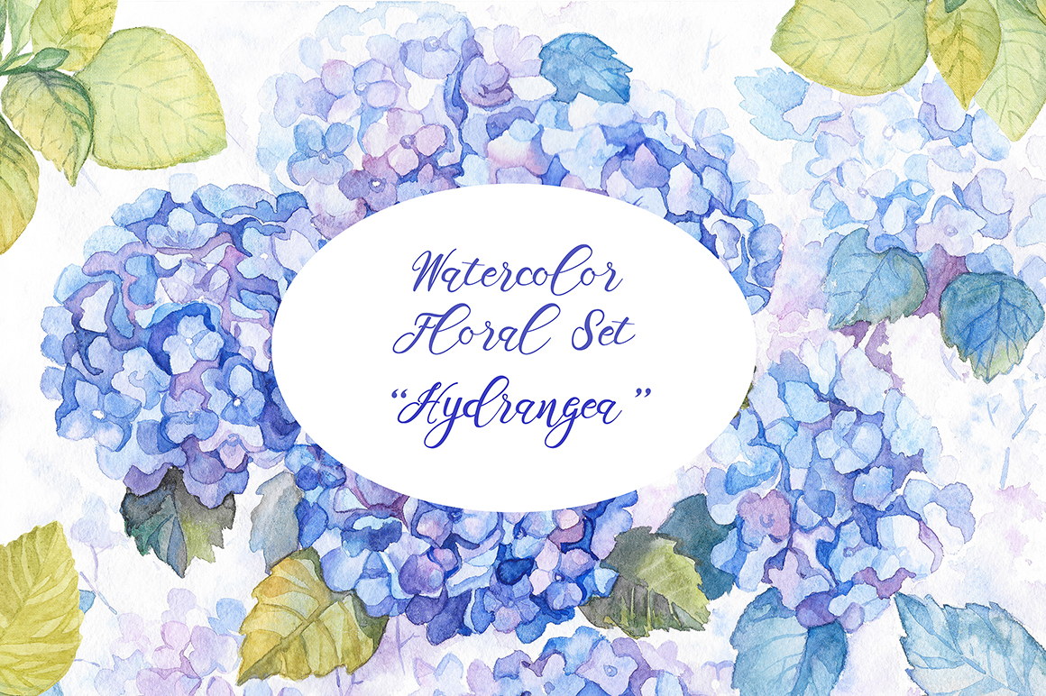Hydrangea Watercolor Flowers example image 1