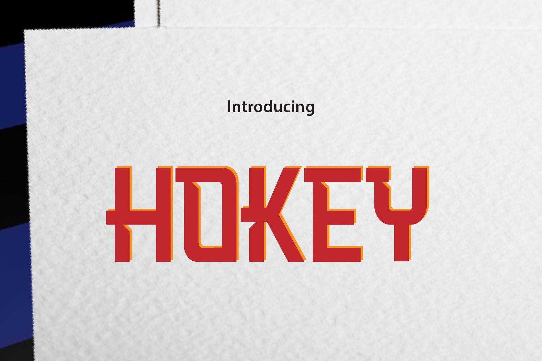 HOOKEY example image 1