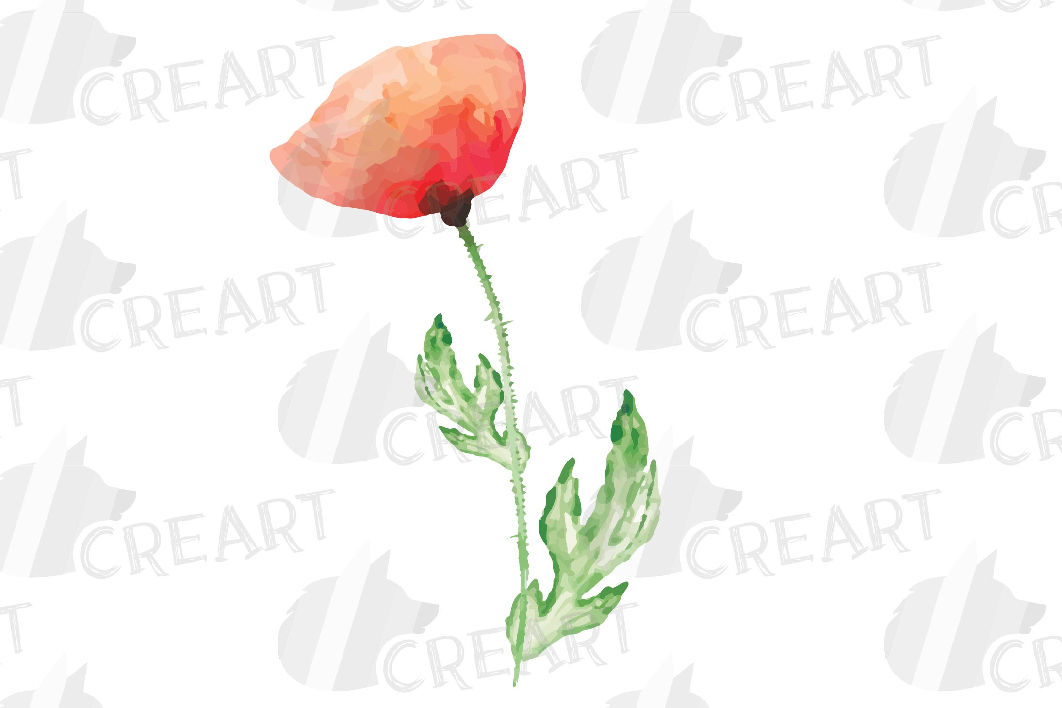 Watercolor red poppy flower and leaf decor clip art. Poppies example image 9