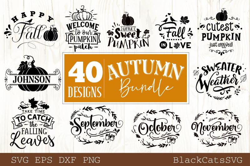 Autumn SVG bundle 40 designs Fall and pumpkins SVG bundle example image 3