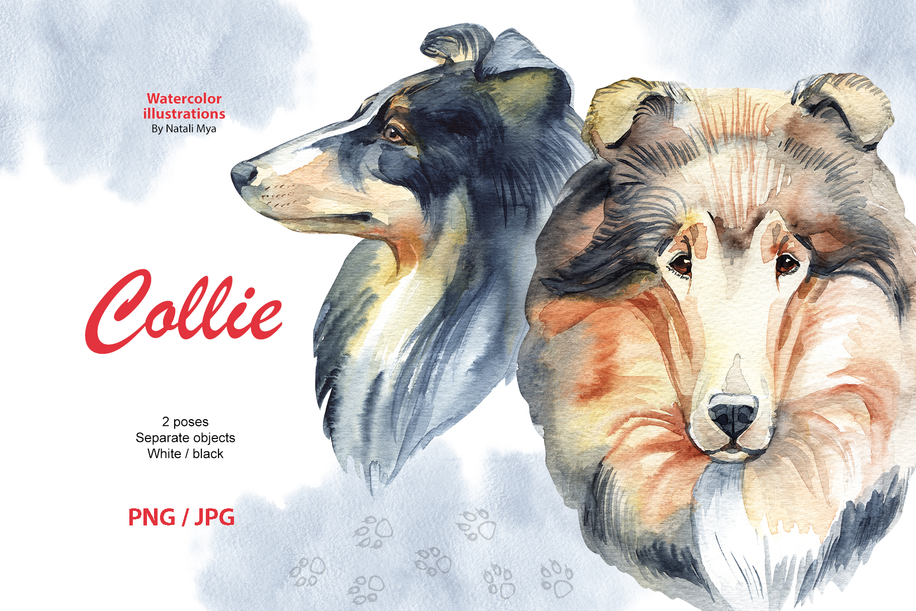 Watercolor dog - Collie example image 1