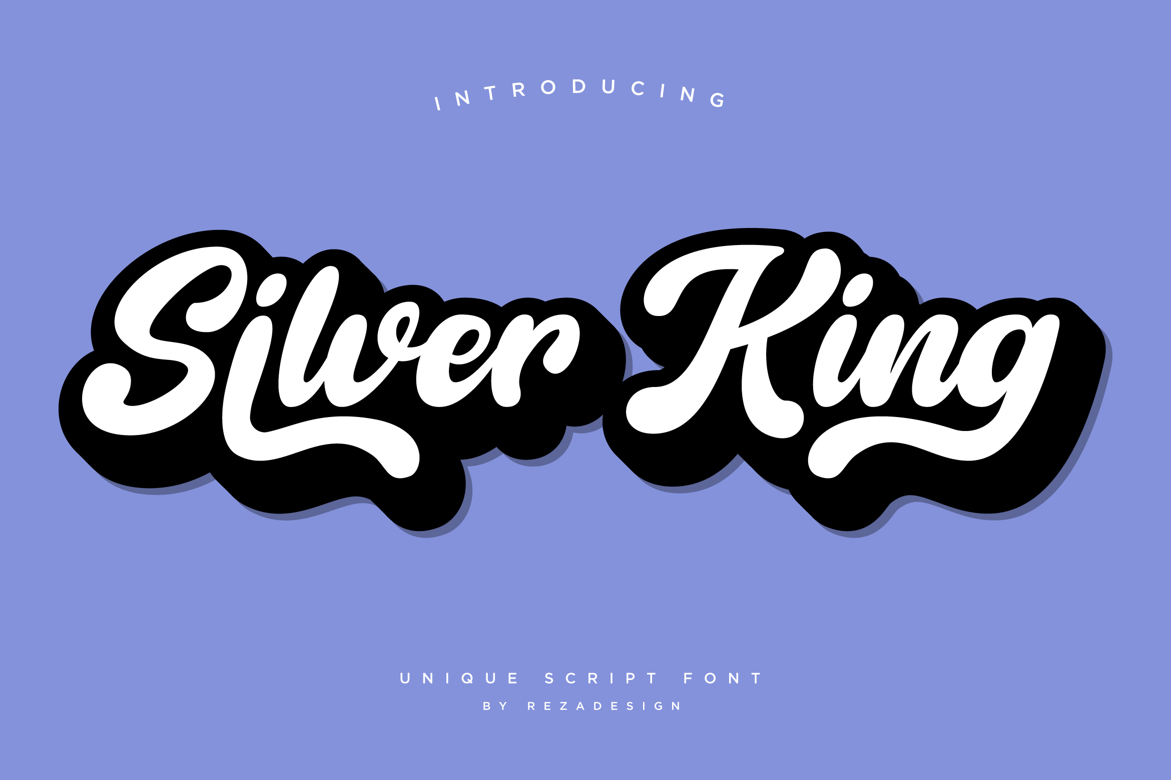 Silver King - Script Font example image 9