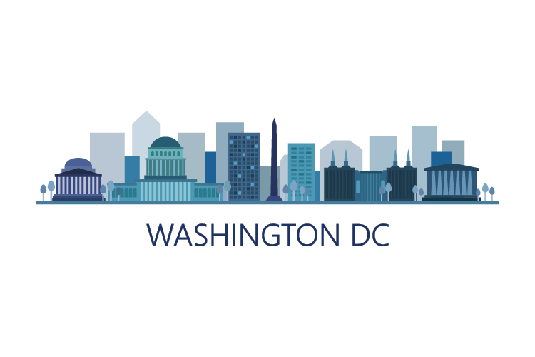 Washington Skyline example image 1