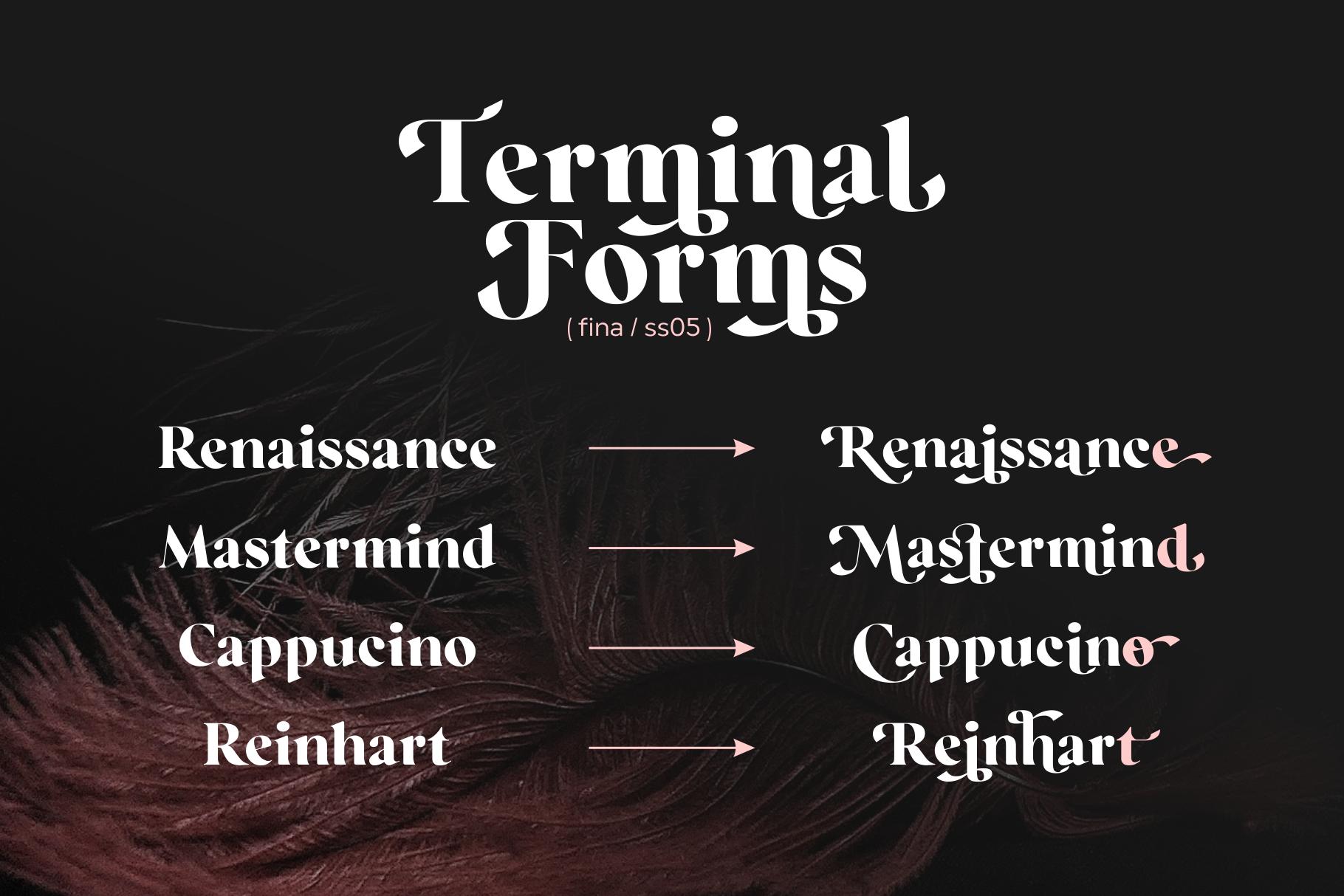 Regatto | Venetian Style Font example image 9