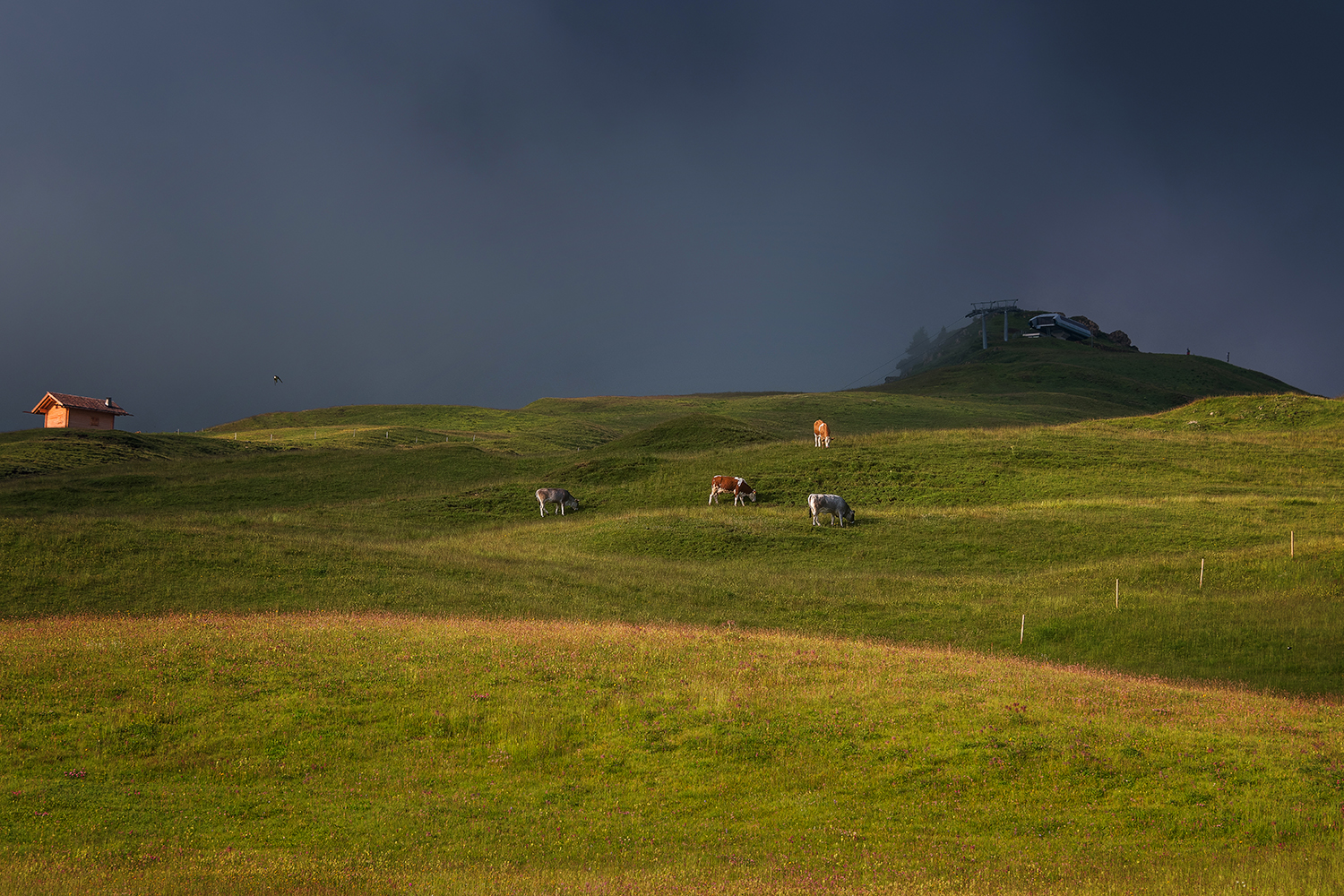 Seiser Alm on a dramatic and gloomy day example image 1