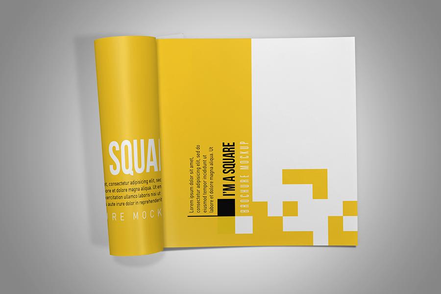 Square Brochure Mockup example image 4