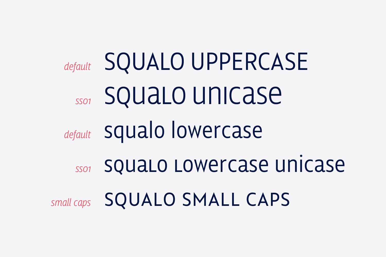 Squalo example image 11