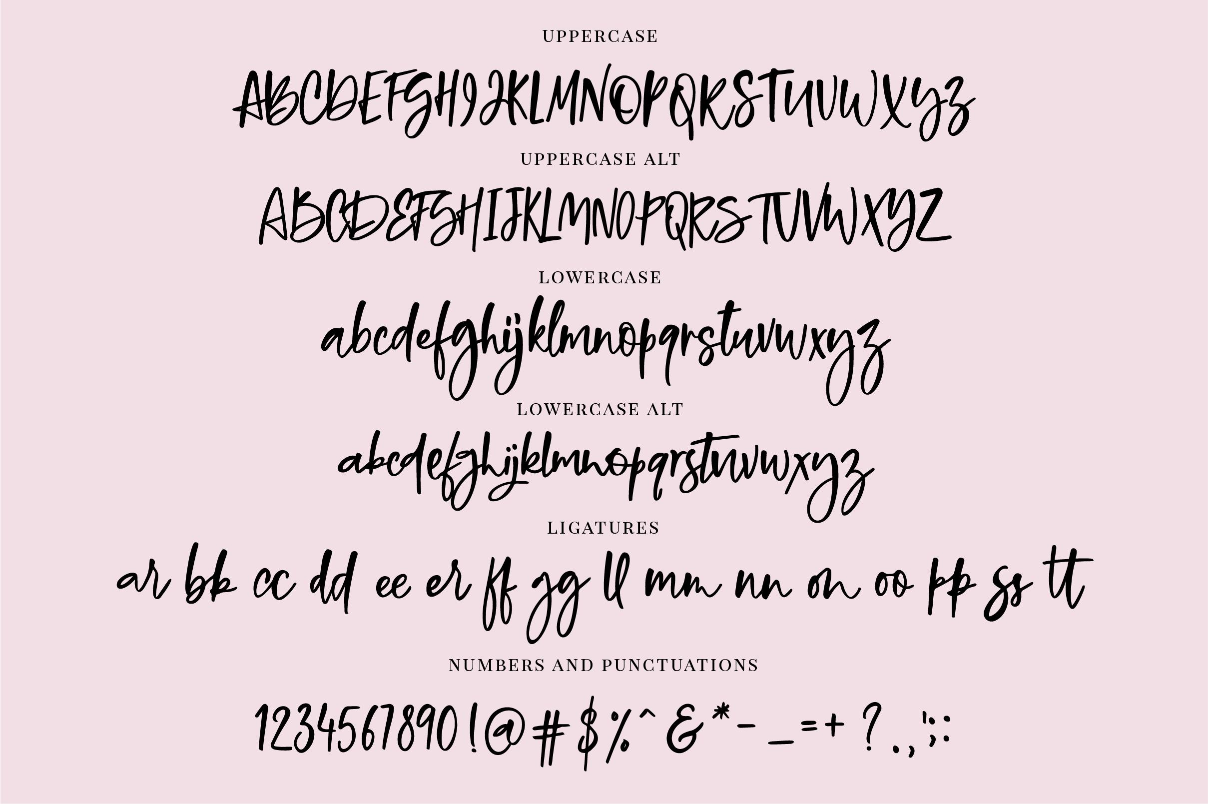 Bold Brush Font  Bonus Font example image 5