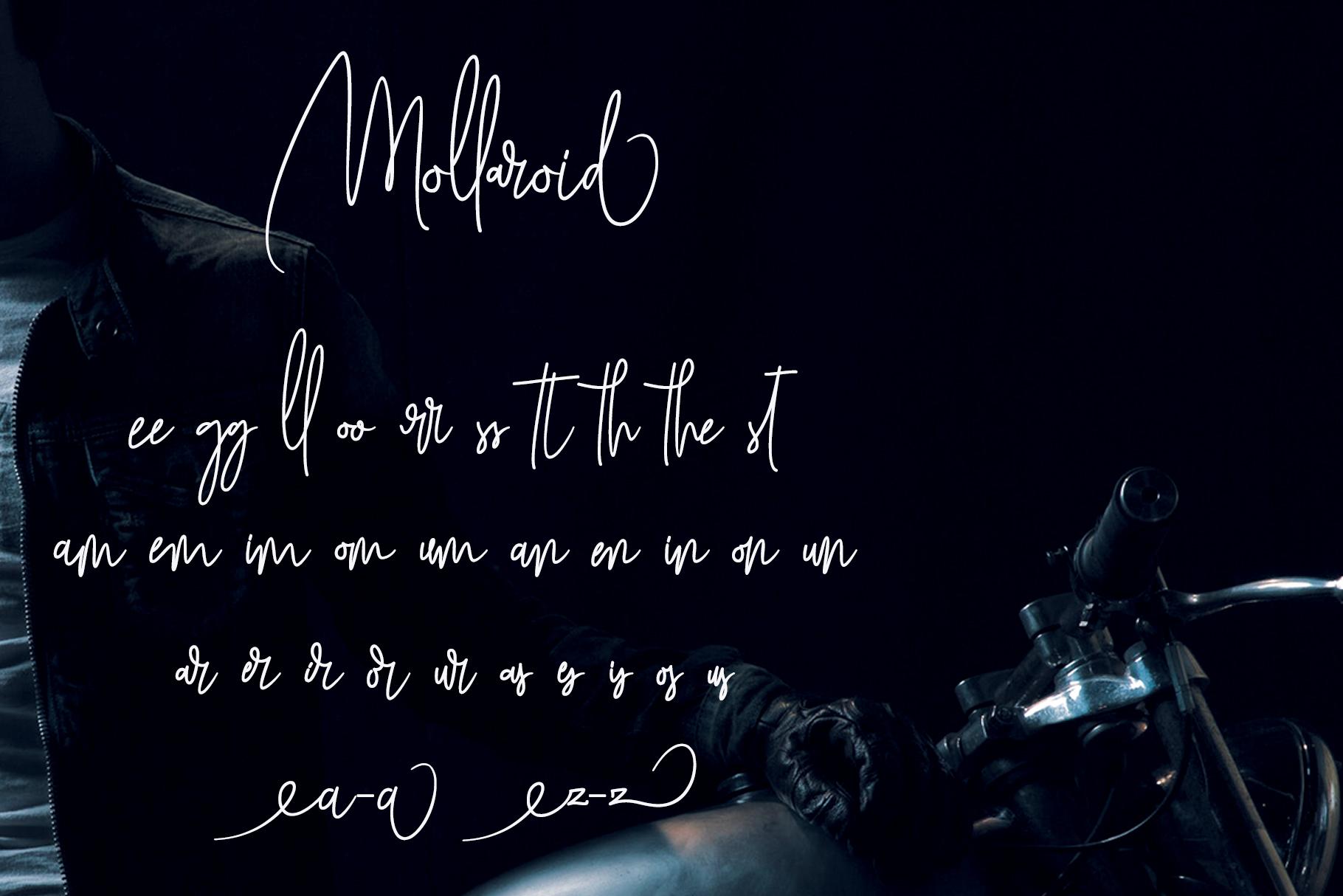 Mollaroid | Signature Font example image 5