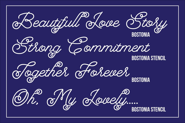 Bostonia example image 6