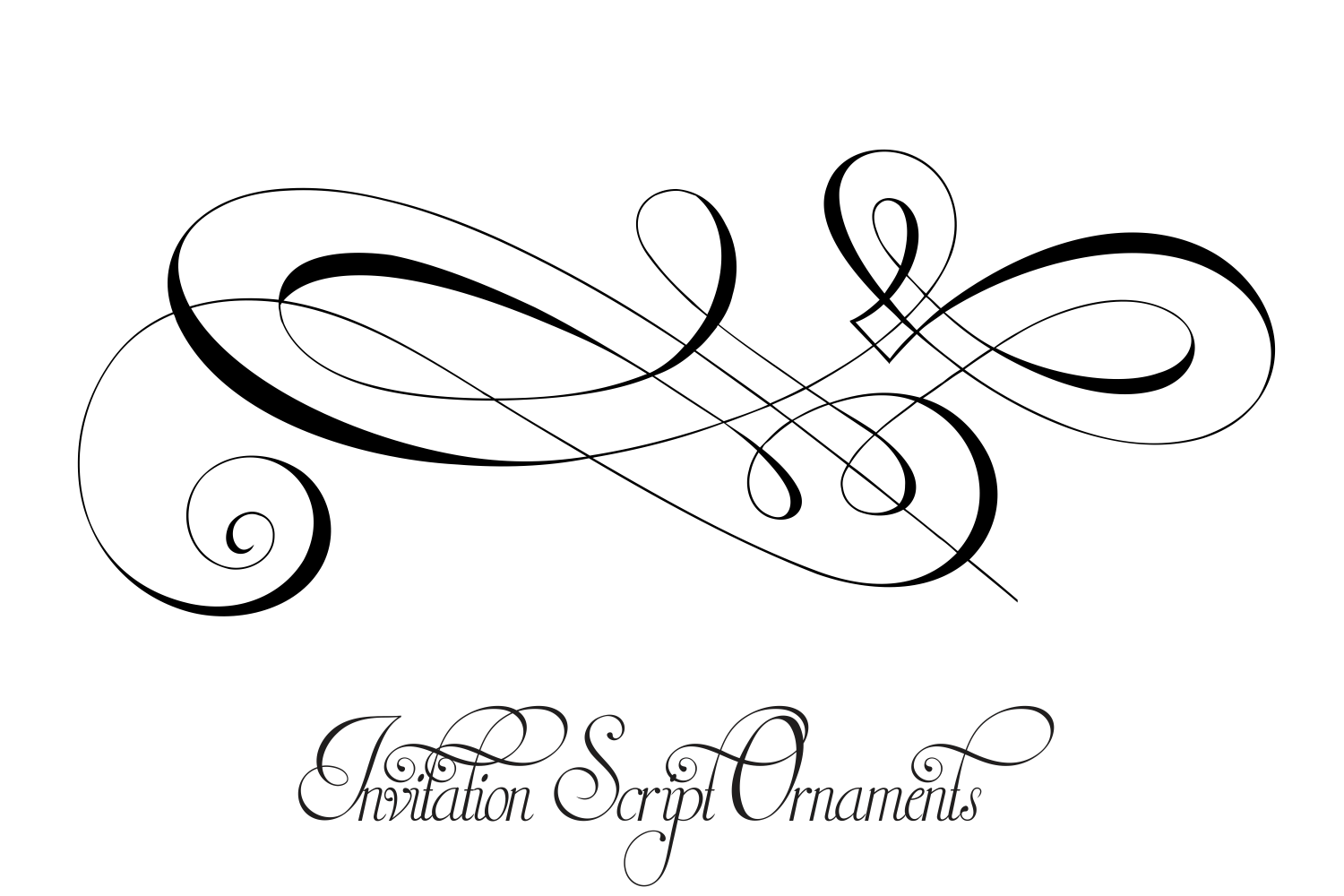 Invitation Script Ornaments  example image 5