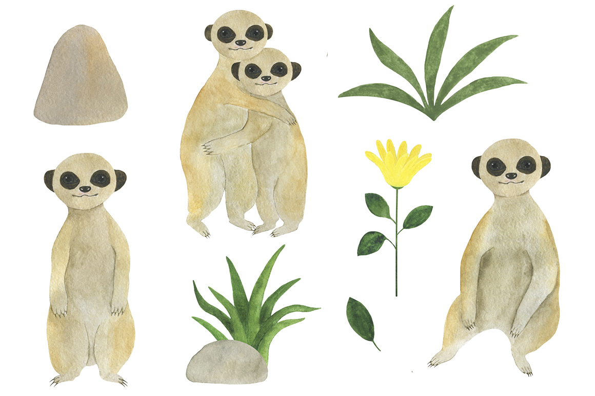 Set meerkats illustrations watercolor example image 2