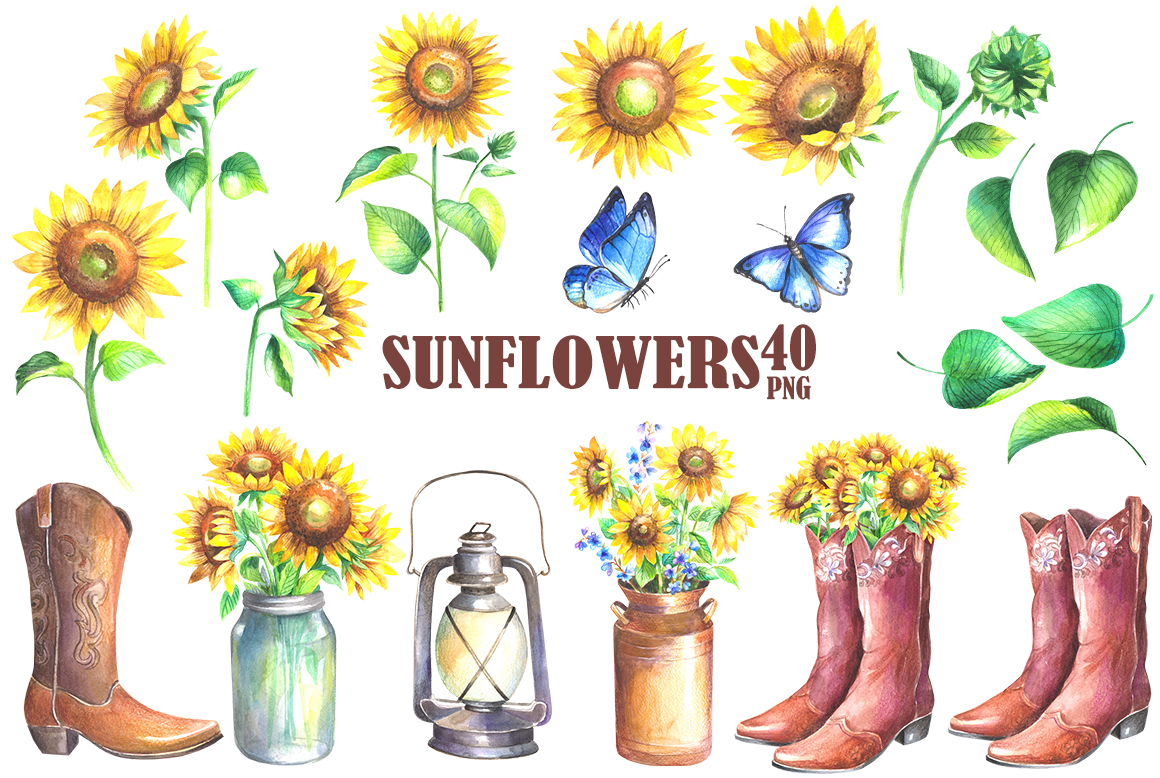 Sunflowers watercolor clipart example image 3