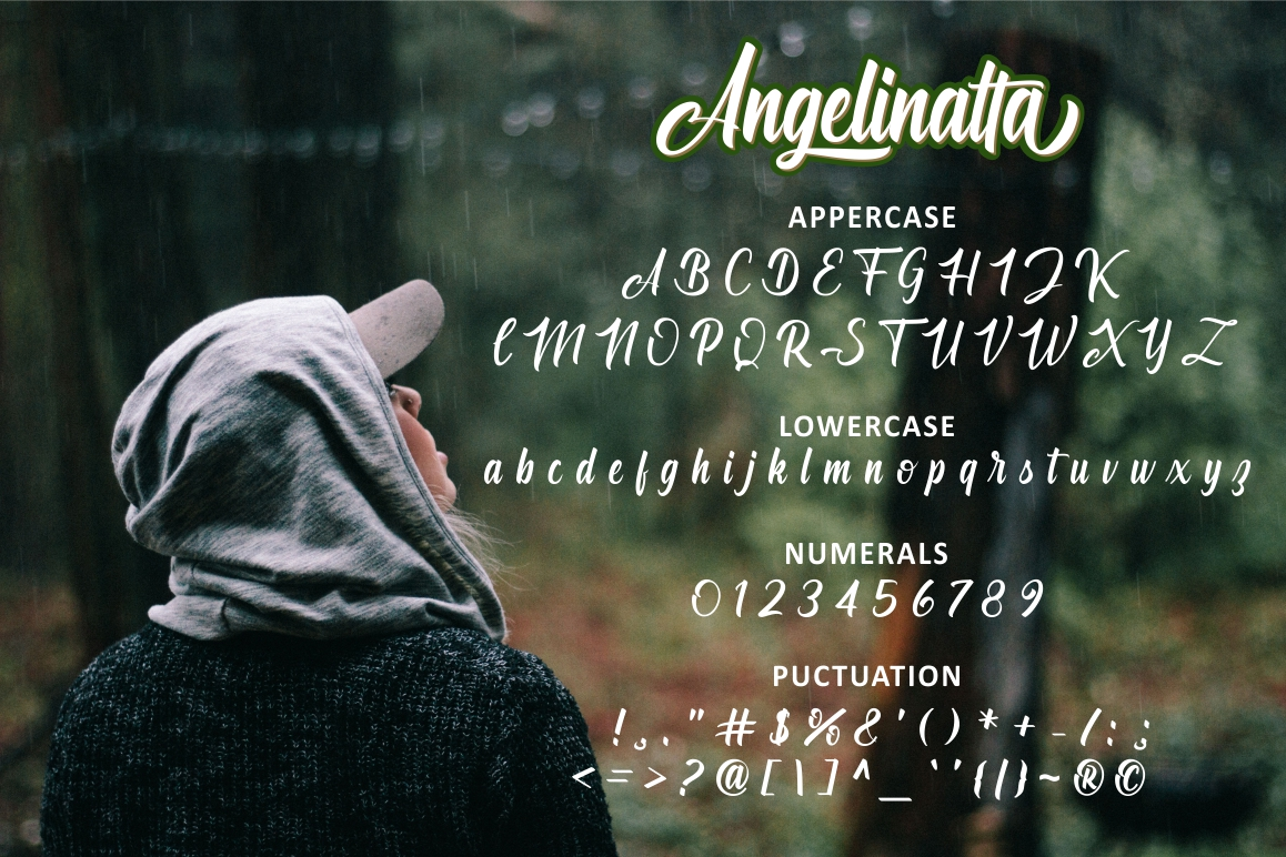 Angelinatta example image 6
