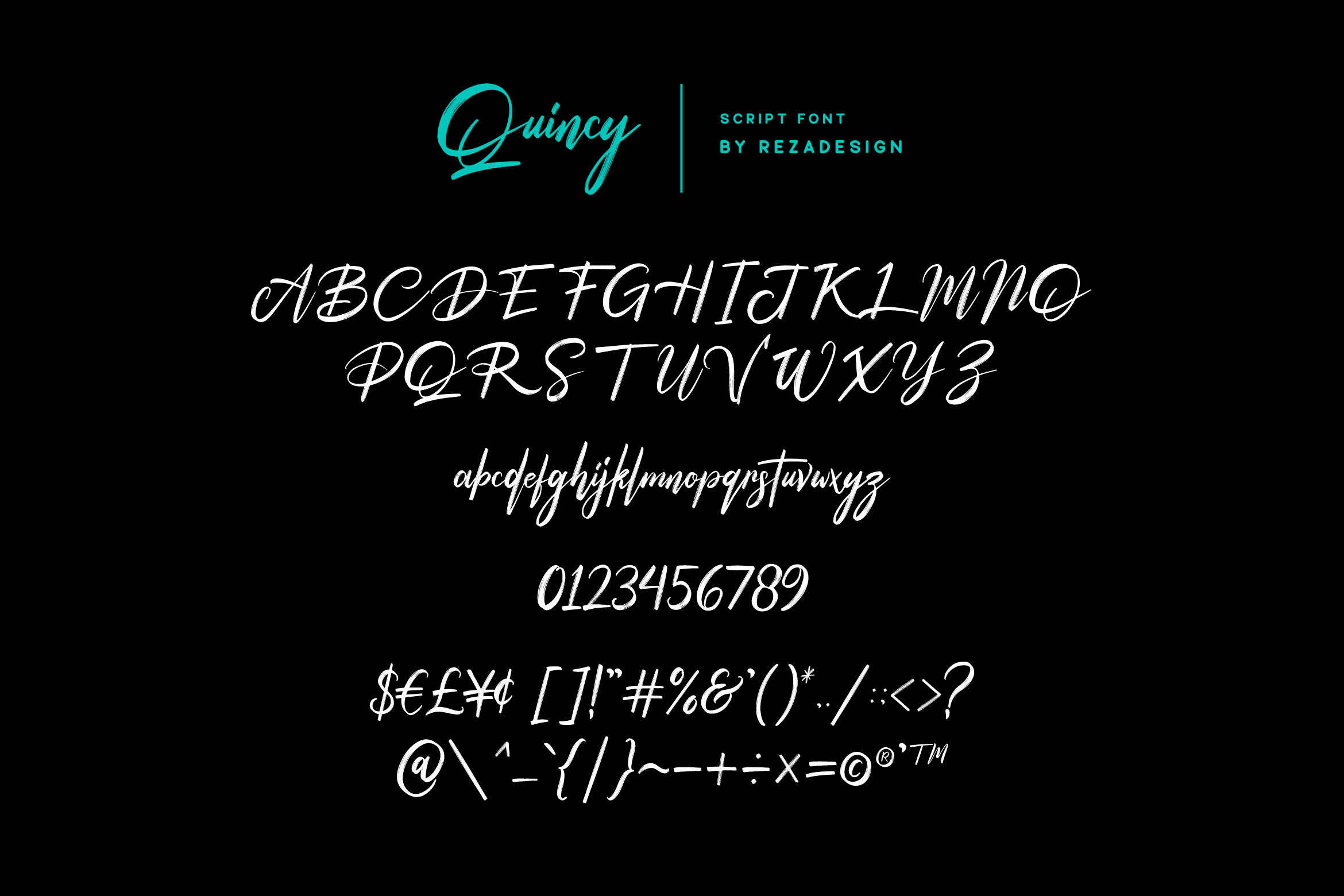 Peter Quincy - Font Duo example image 7