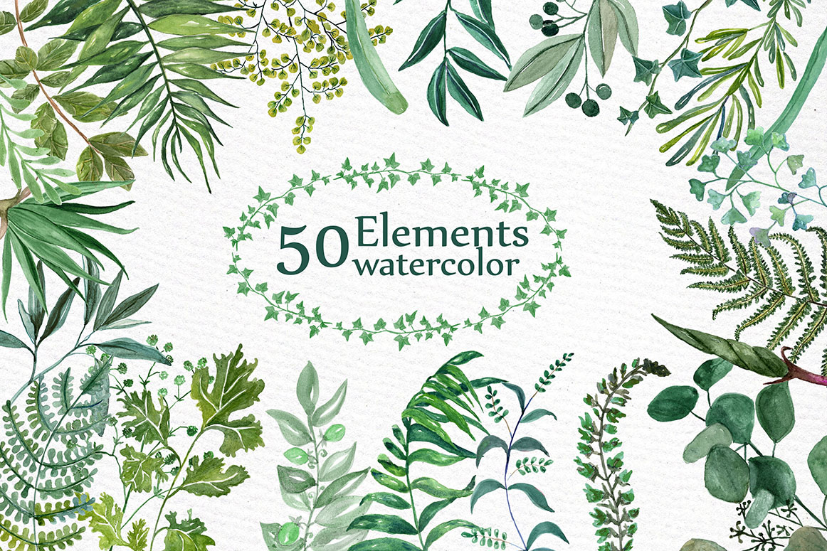 Watercolor Ferns Clipart example image 1