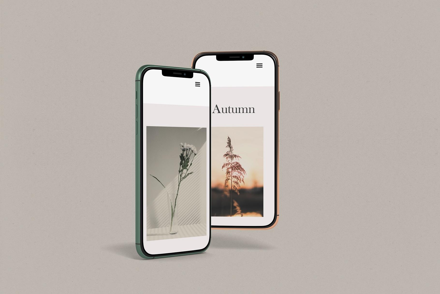 iPhone 11 Pro example image 9