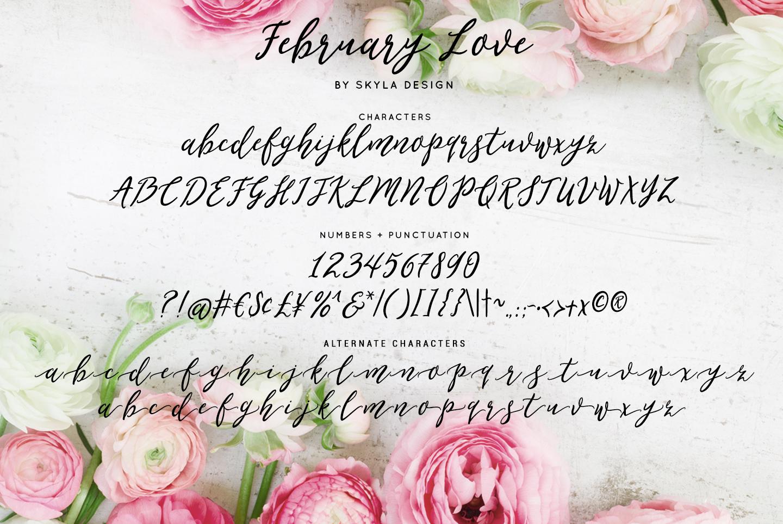 Romantic, flirty wedding font, February Love example image 5