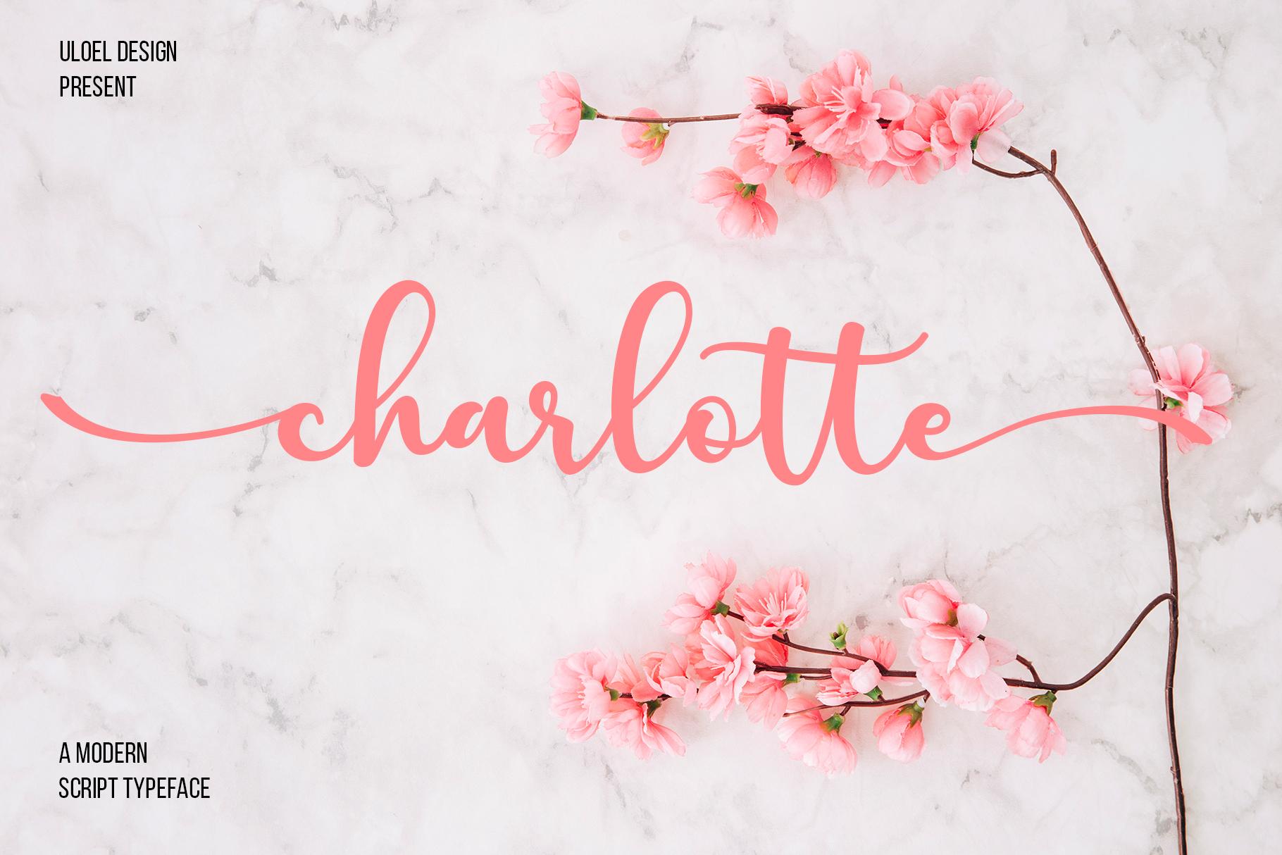 Charlotte example image 1