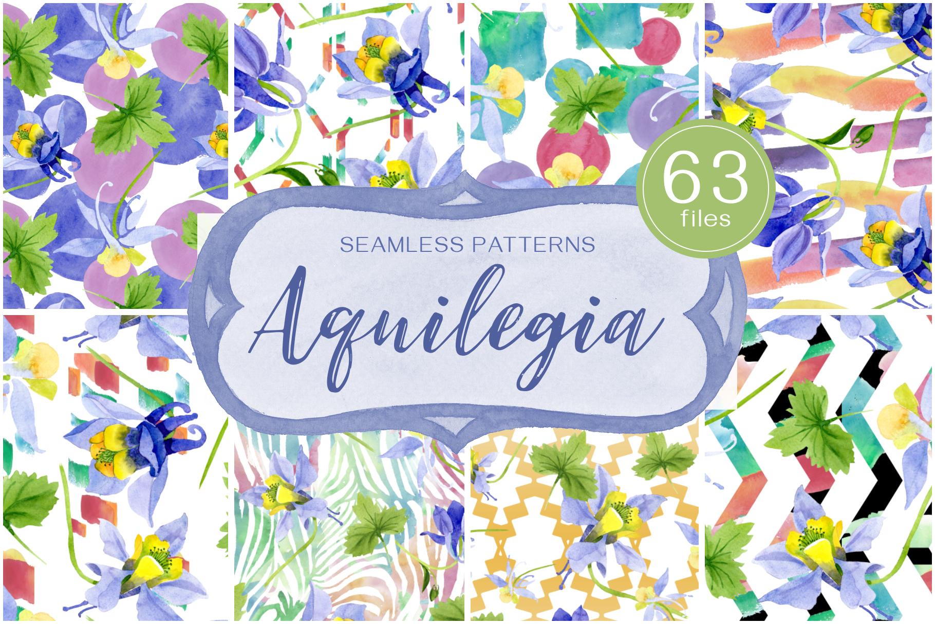 Columbine or Aquilegia flower watercolor png example image 1