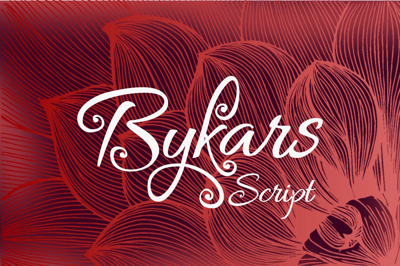 Bykars example image 2