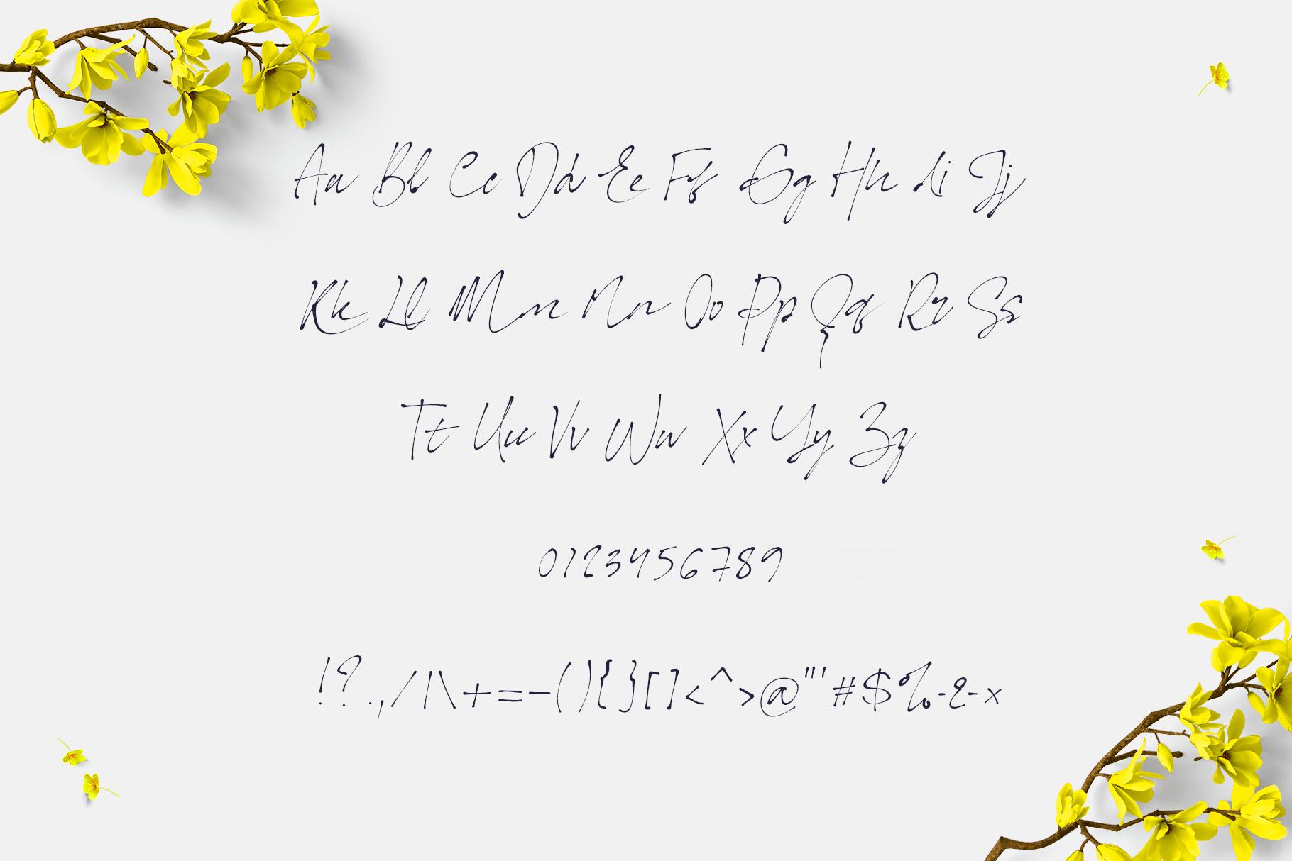 Bonita. Script font family. example image 6
