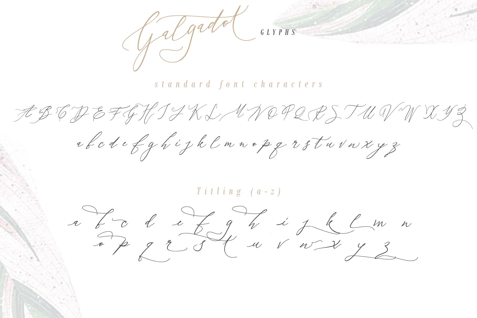 Galgadot example image 8