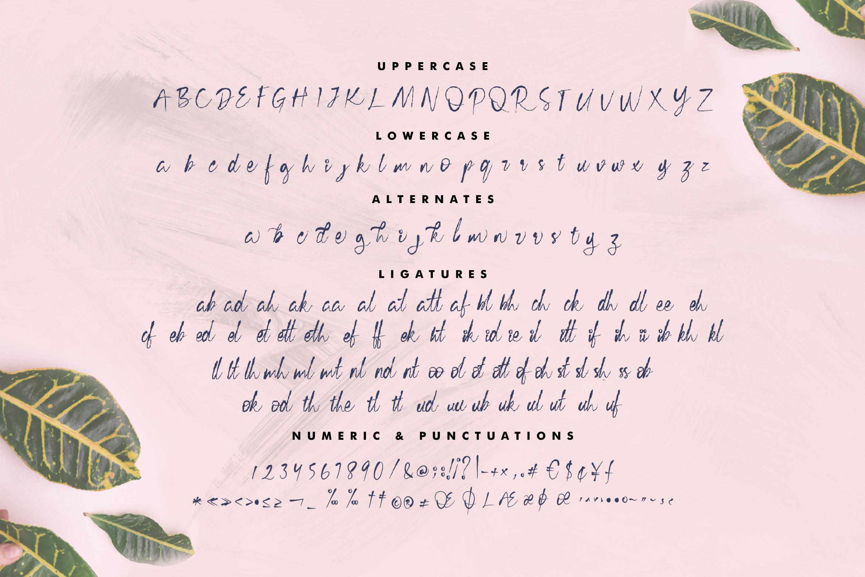 Cecillia - Script example image 12