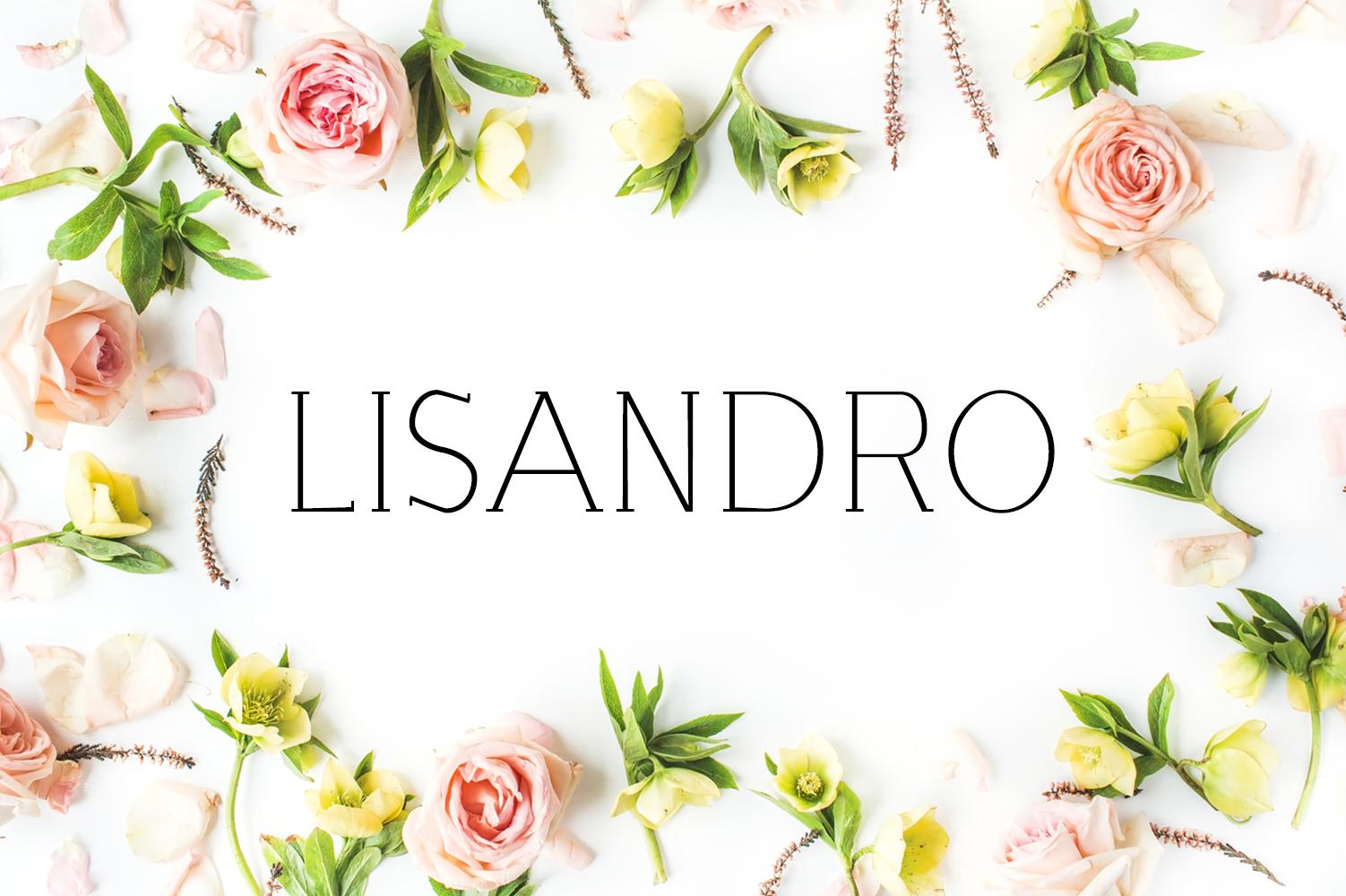 Lisandro Slab Serif Font example image 1