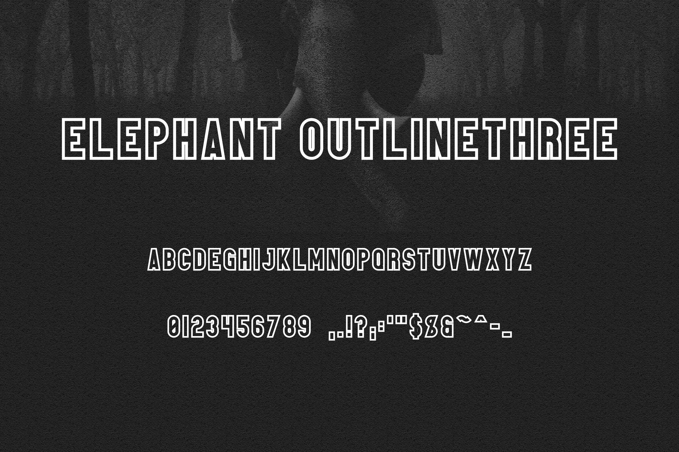 Elephant Font Family example image 13