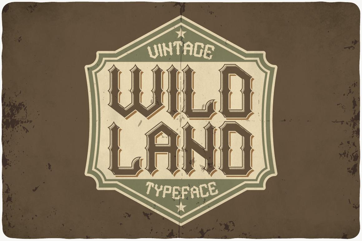 Vintage Fonts Bundle example image 25