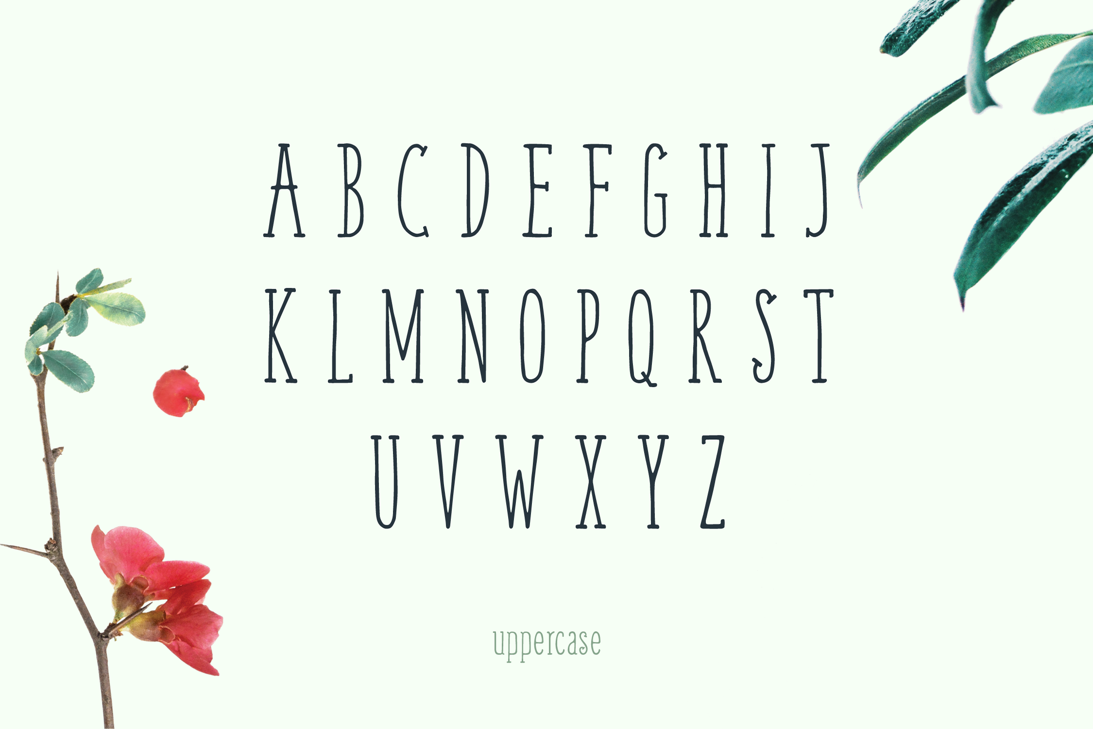 Weem Hand Lettered Font example image 2