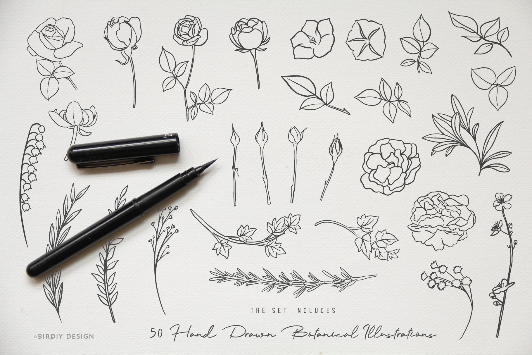Botanical Illustrations & Logo Kit example image 3
