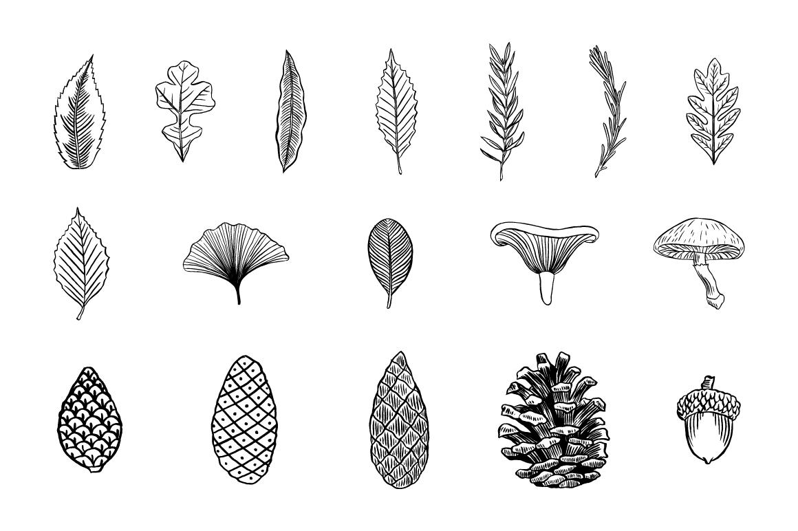 Rustic Clipart Designs Vol 2 Example Image 6