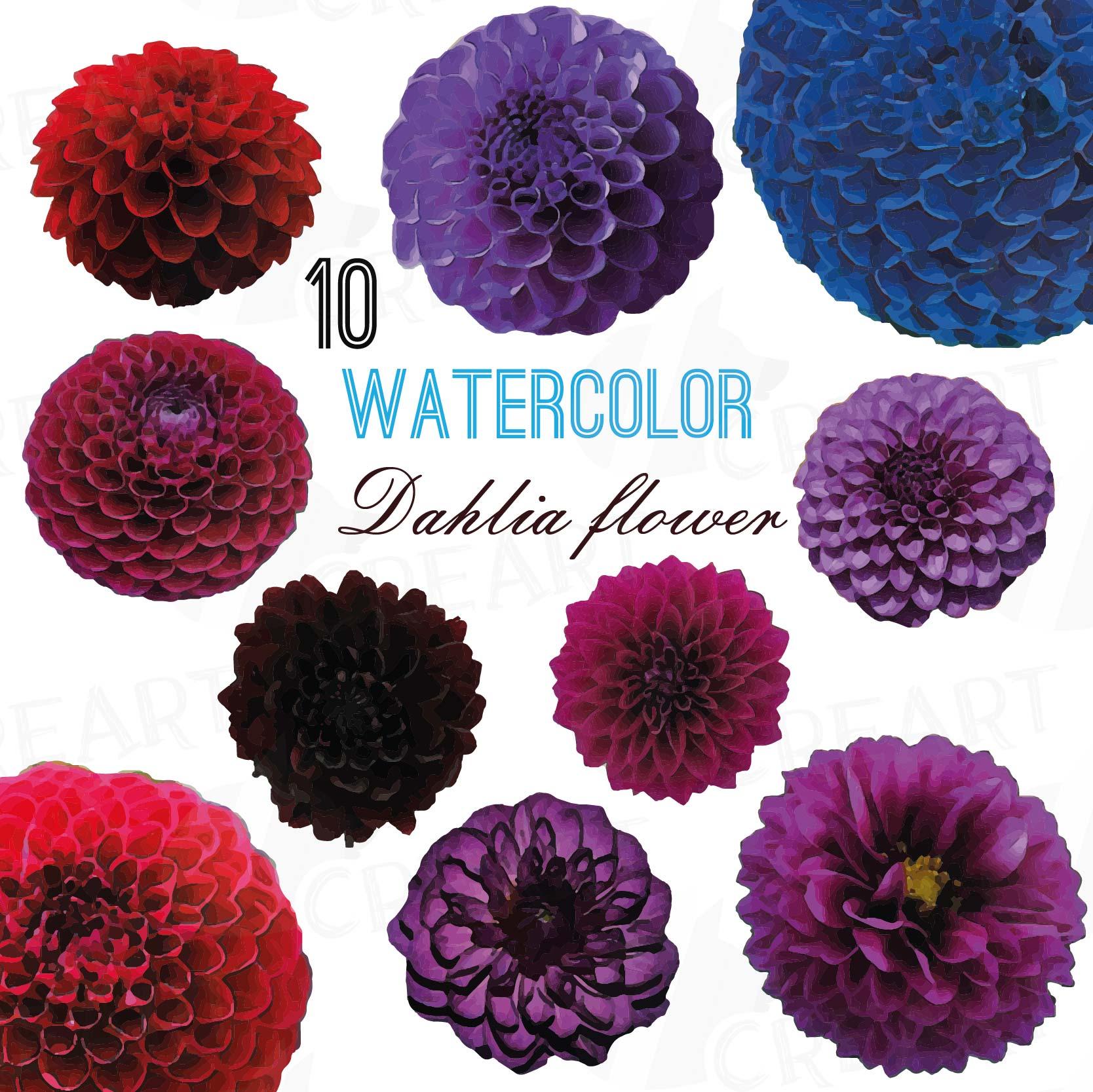 Watercolor Dahlia Flower Clip Art Pack Watercolor Purple Dahlia