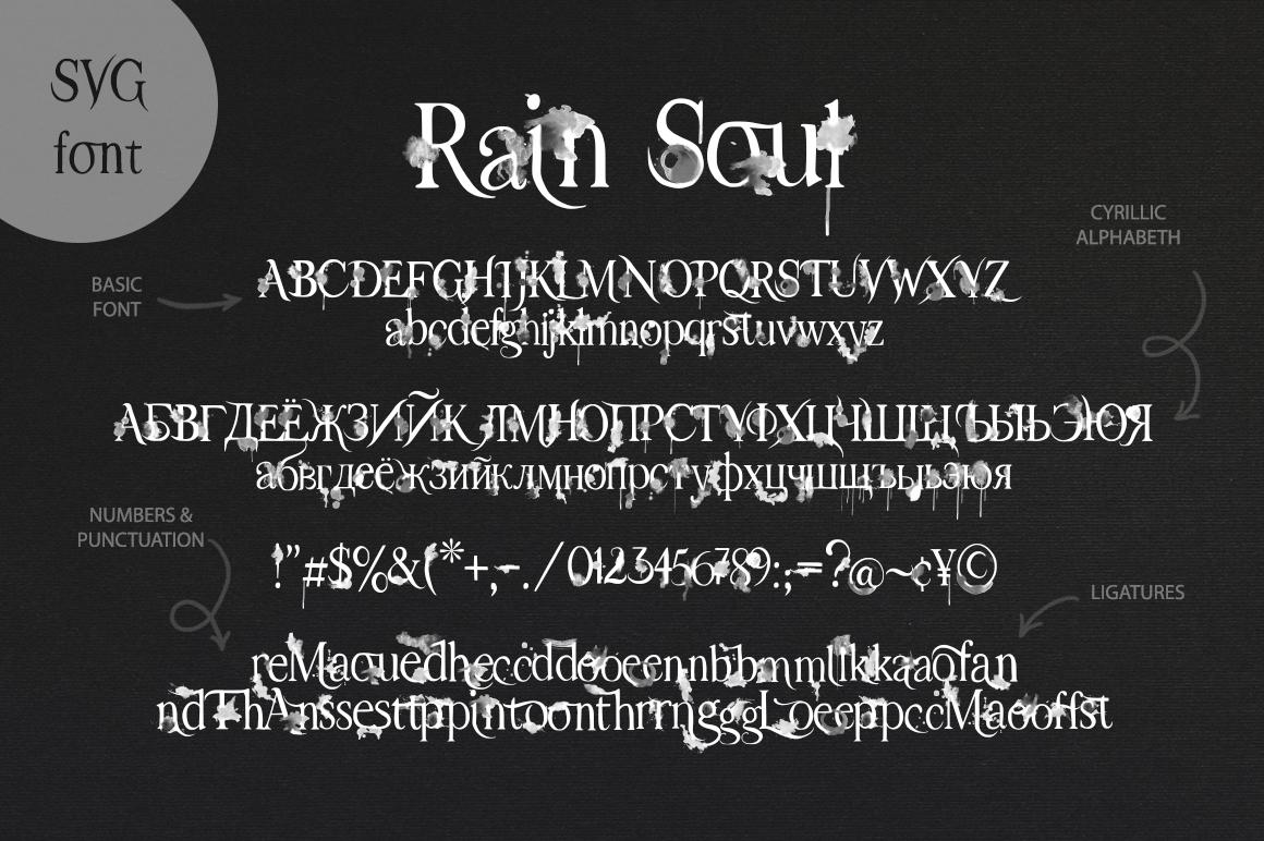 Rain Soul. SVG Font. example image 13
