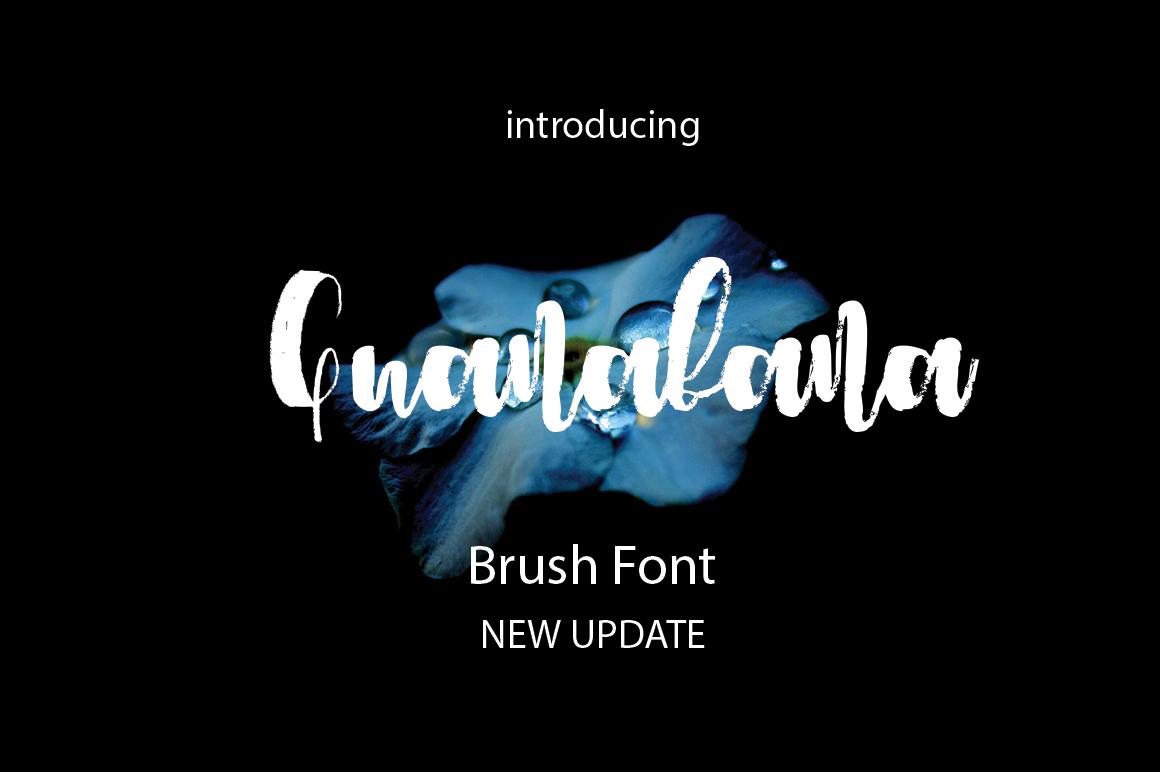 Guanabana Brush Font example image 4