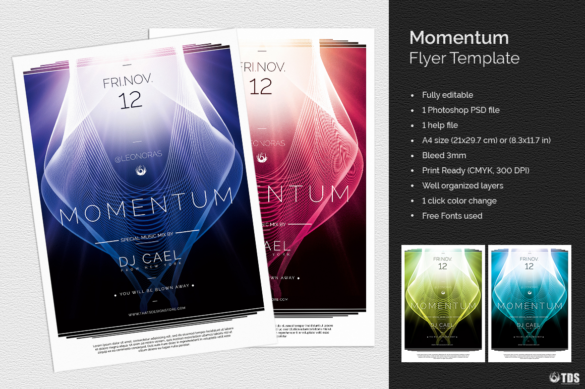 Momentum Flyer Template example image 2