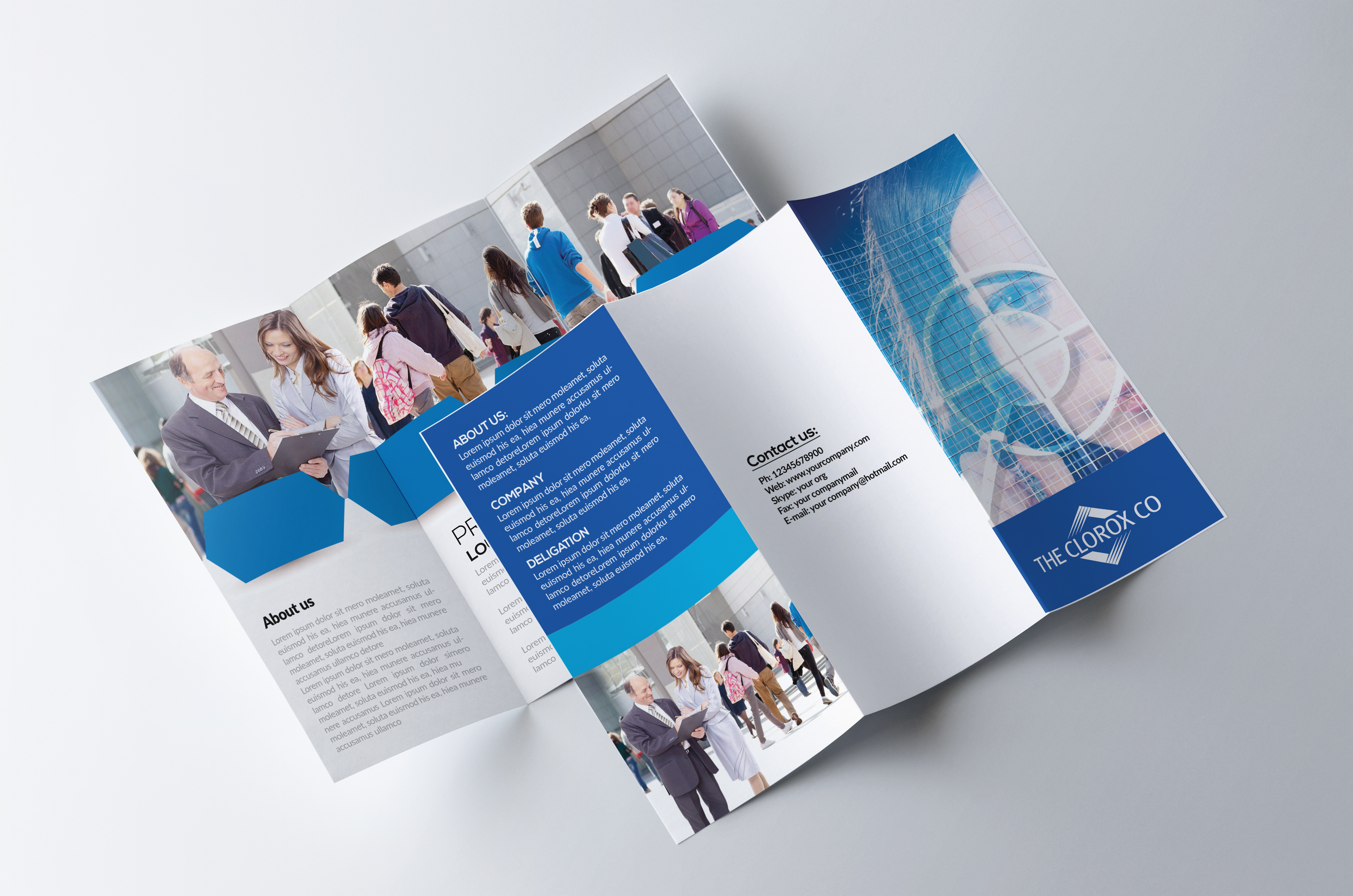 Business -Trifolds Brochures Templates example image 3