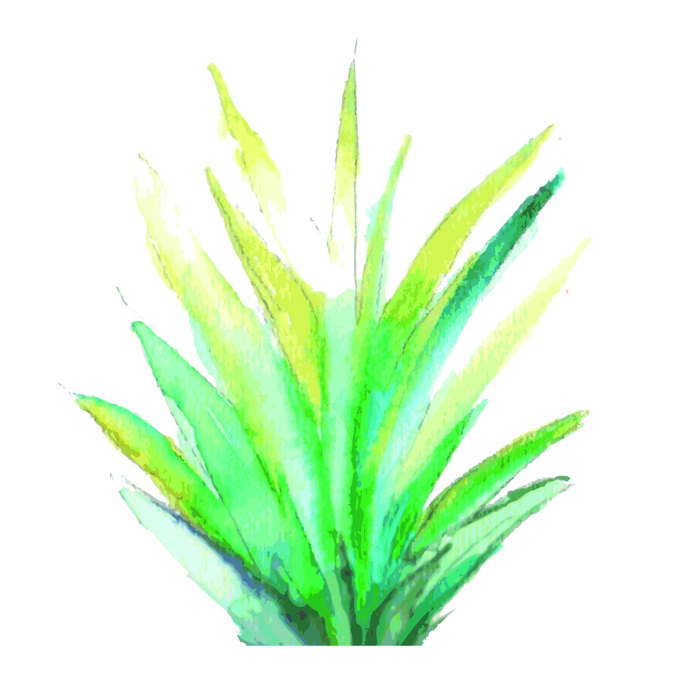 Tropicla Breeze clip art bundle example image 11