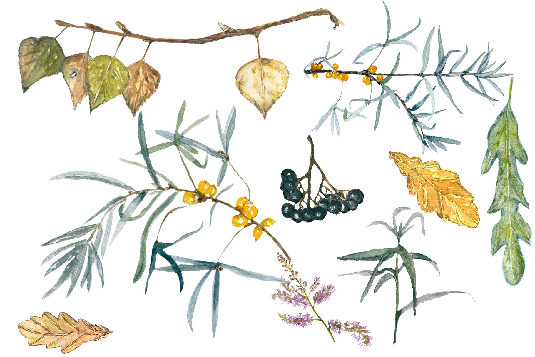 Delicate autumn illustration example image 5