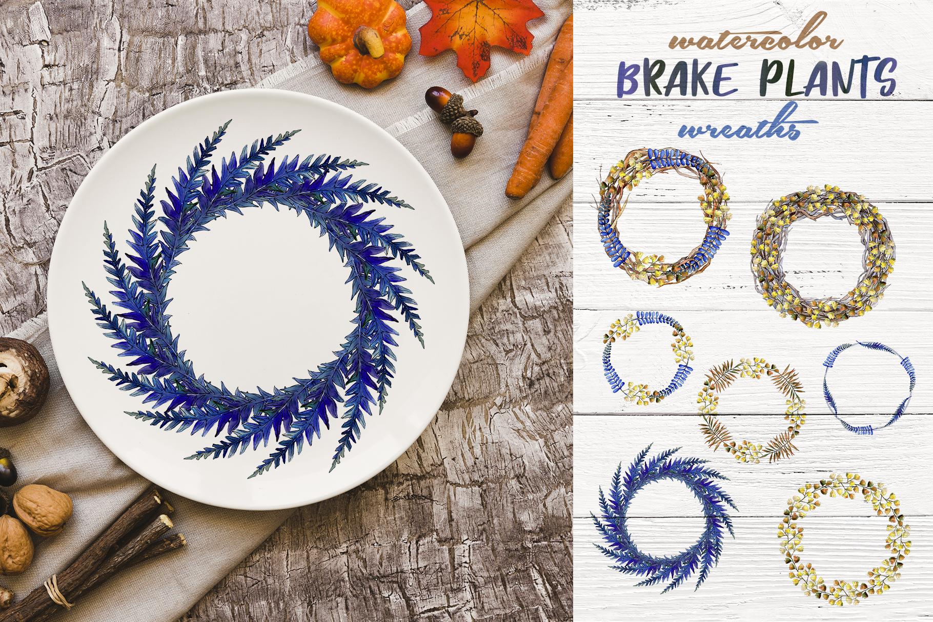 Brake plants PNG watercolor set example image 3