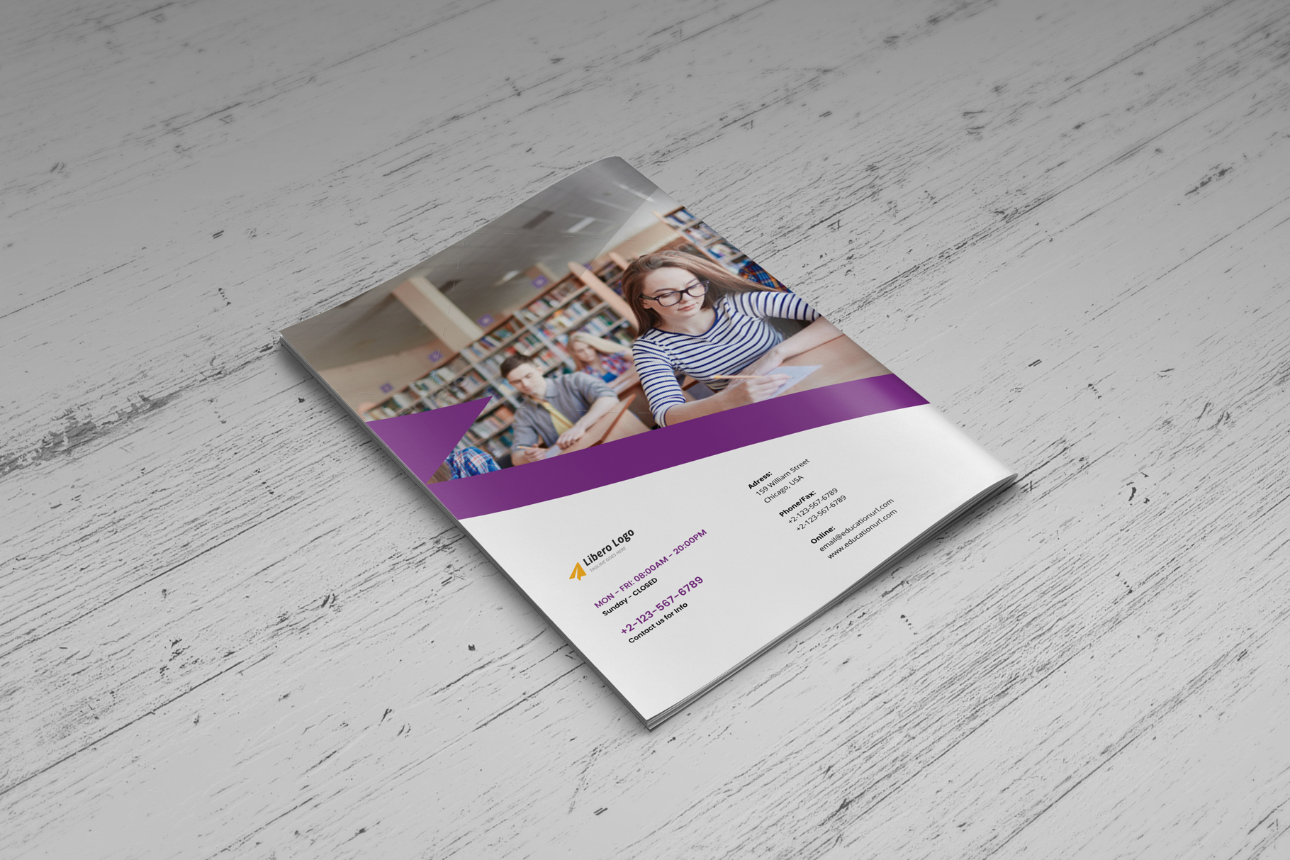 Education Prospectus Brochure v7 example image 11