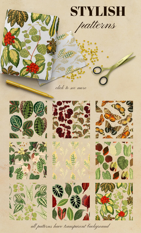 Vintage exotic herbarium design set example image 6