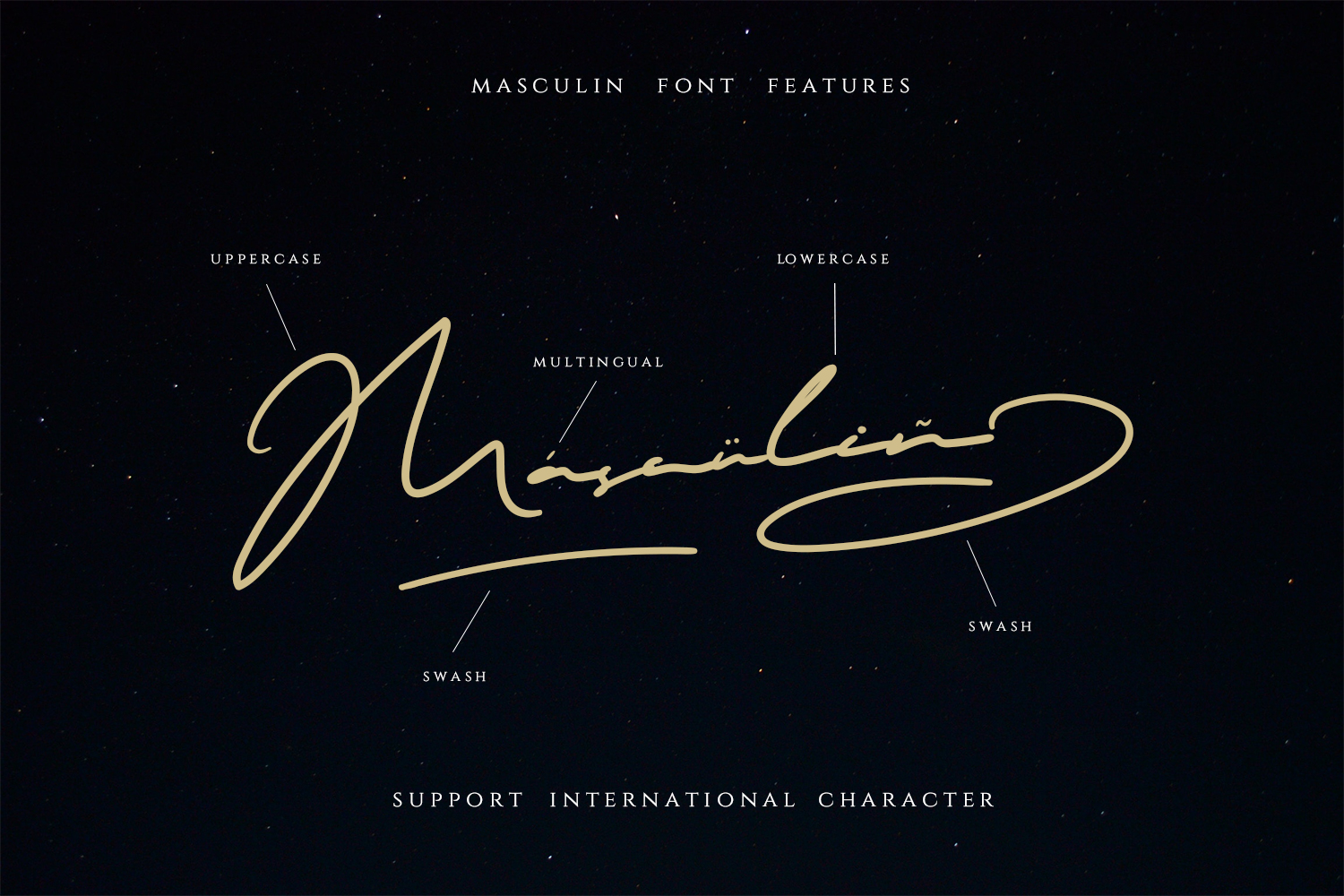 MASCULIN - The Real Signature Font example image 6