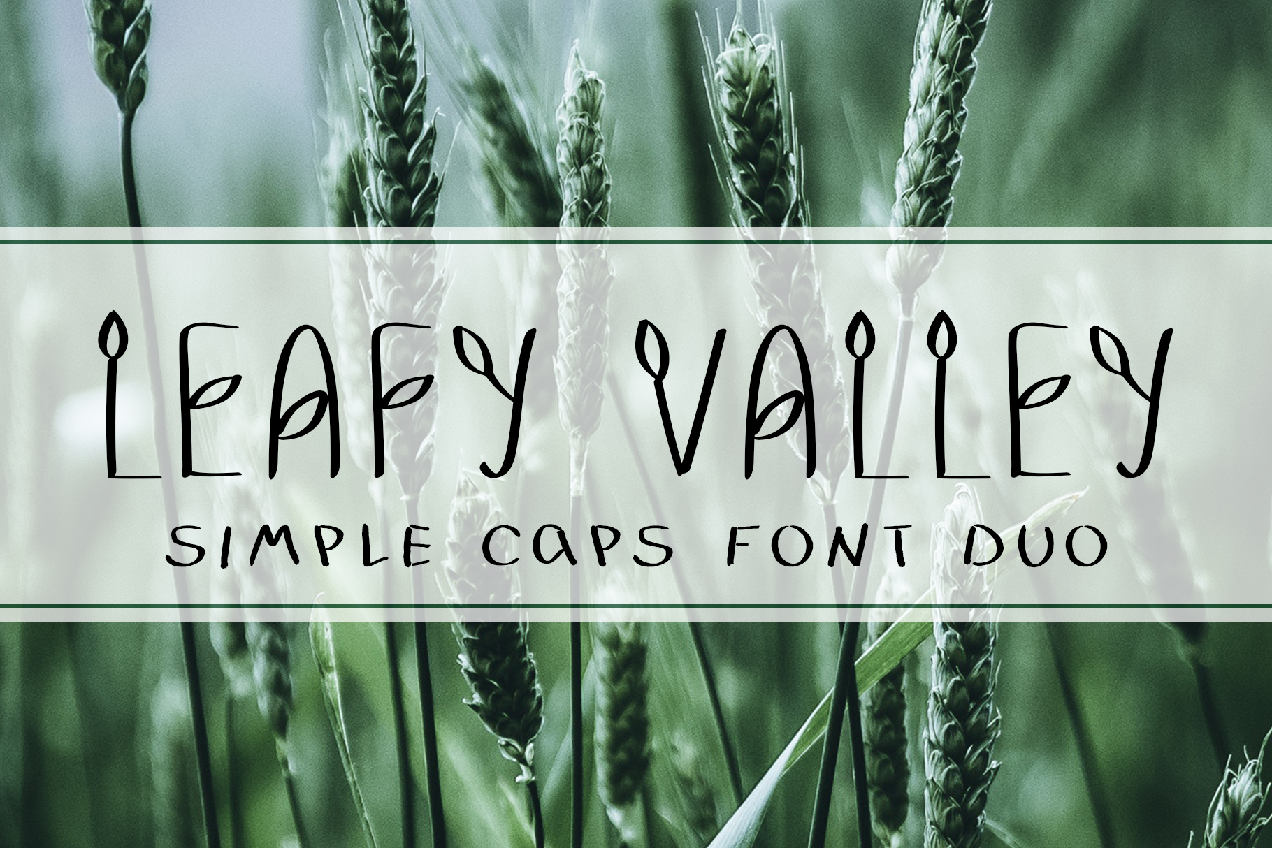 LEAFY VALLEY - Hand-drawn Font DUO example image 1