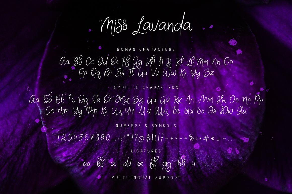 Miss Lavanda example image 6
