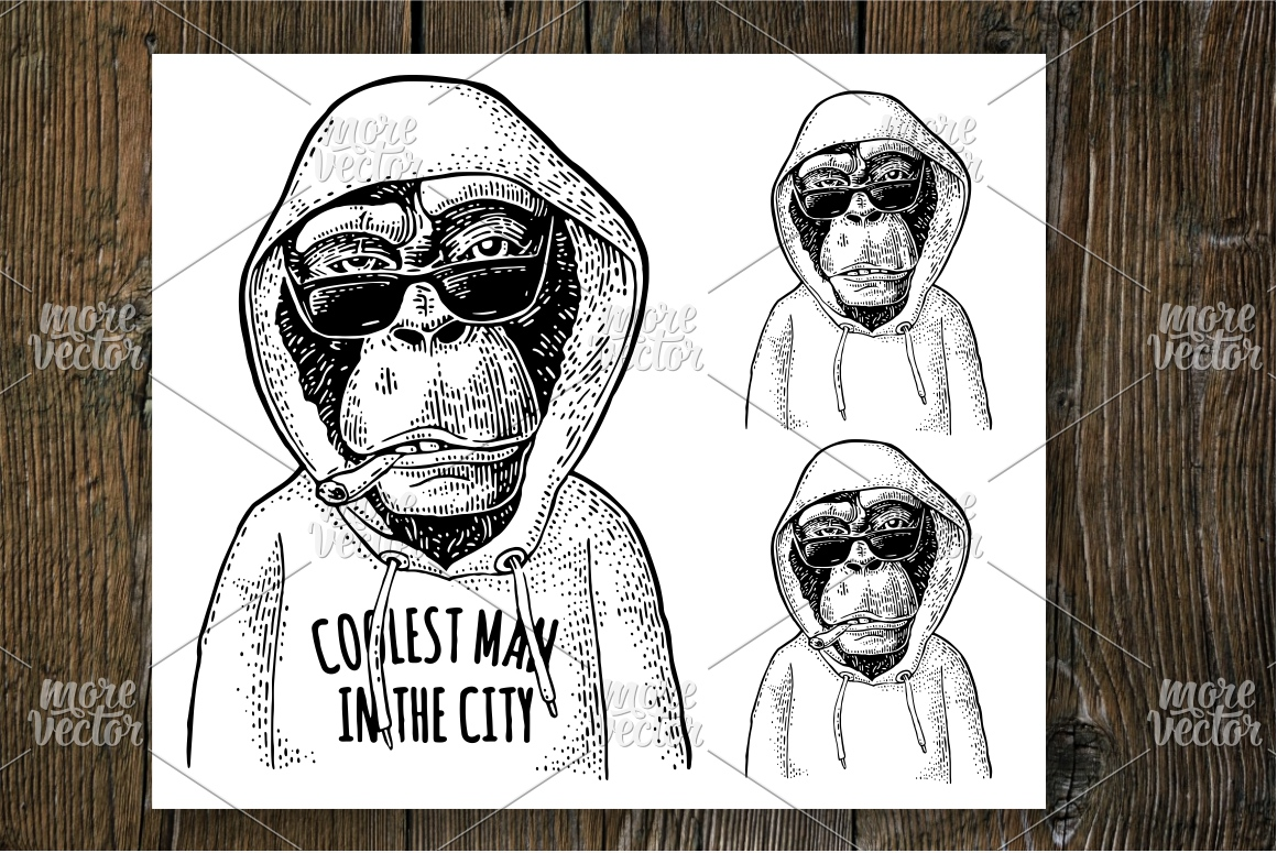 Monkey hipster dressed in the hoodie engraving example image 1