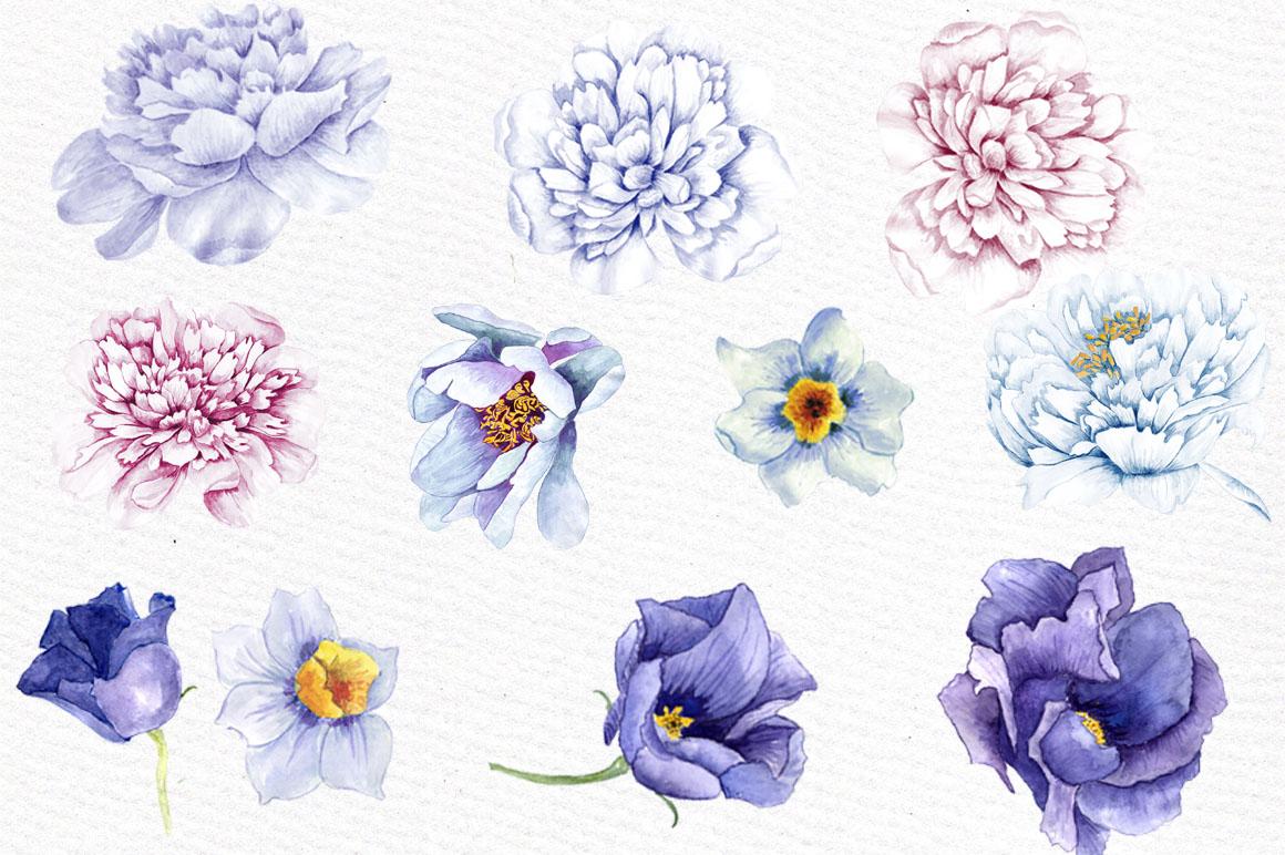 Watercolor peonies clip art example image 2
